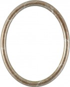 Gilda Champagne Silver Oval Picture Frame