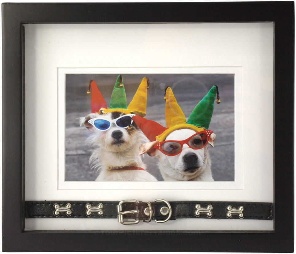 Black collar dog picture frame image 1 jeuxipadfo Images