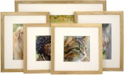 Set of 5 Natural Matted Gallery Picture Frames