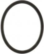 Lyla Black Silver Oval Picture Frame