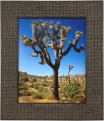 Lucia Black Beaded Picture Frame