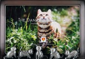 Playful Cat Picture Frame