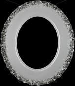 Ella Silver Spray Oval Picture Frame
