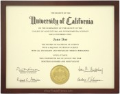 Dark Walnut Stained Wood Diploma Frame