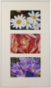 Fineline Silver Matted Triple Picture Frame