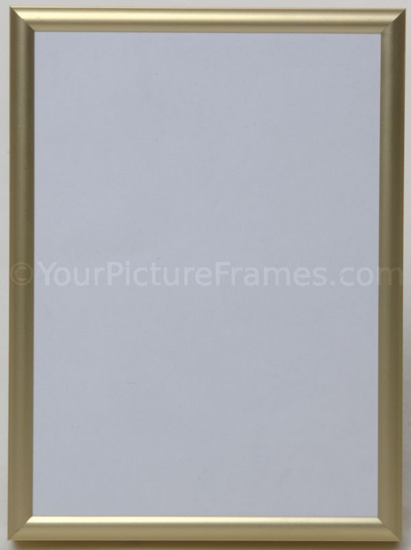 tempo gold metal picture frame