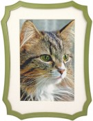 Octagon Green Picture Frame