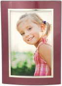 Merlot and Silver Dome Metal Picture Frame