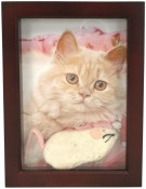 3/4 Deep Brown Shadow Box Picture Frame